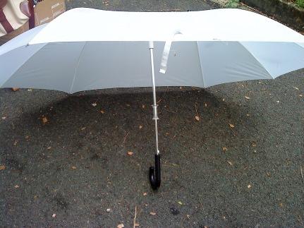 Lover's umbrella! Cute!