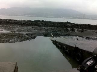 Fisherman's Wharf area